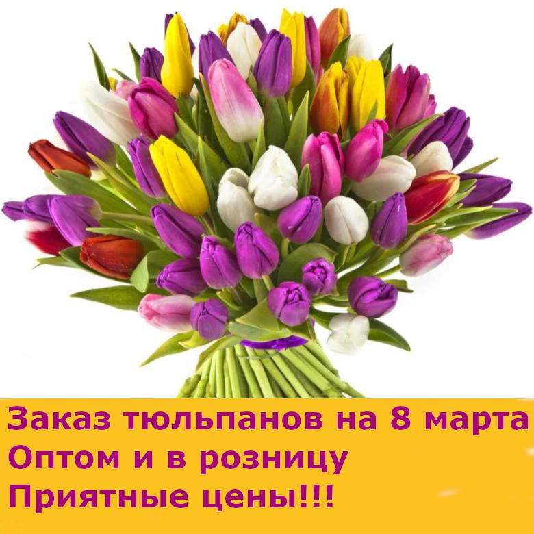 Тюльпаны в Минске