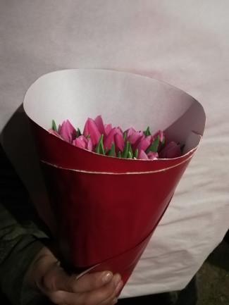 Тюльпаны, сорт Ирина, упаковка 15 шт
