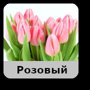 tulip розовый